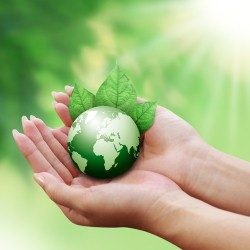 2013 Green Building Trends